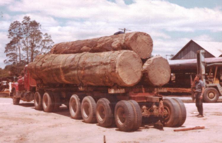 loading-at-grants-thurechts-logs