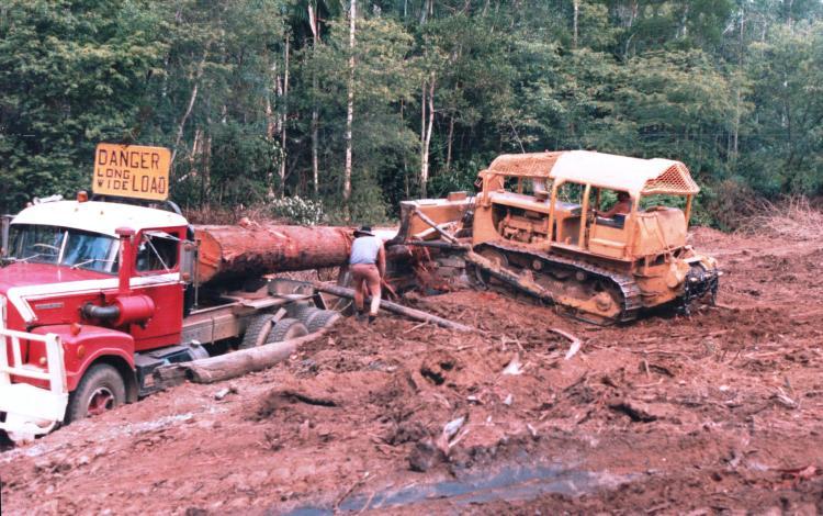 loading-logs-313-early-1980s